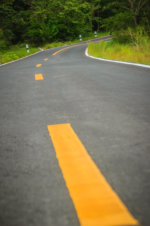Den nya slingriga asfaltvägen buktade i landsbygden med den gula linjen i mellersta dela av två gränder royaltyfria foton