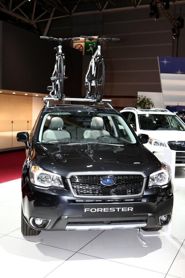 Den nya Subaru skogvaktaren arkivbilder