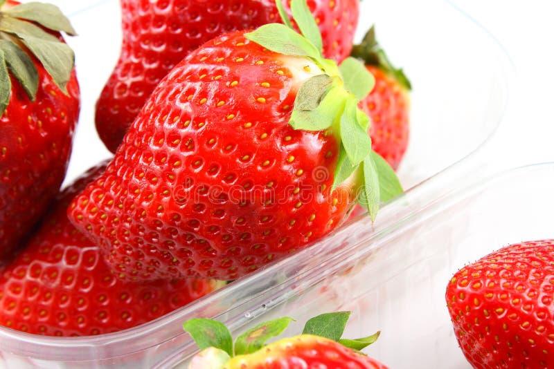 Den nya trädgårds- jordgubben bär frukt i små genomskinliga plast- askar arkivfoton