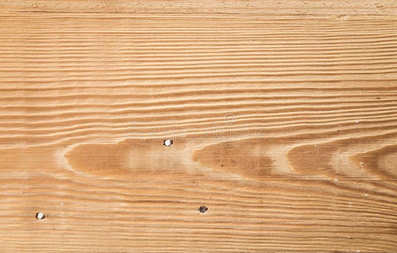 Den nya träplankapanelen som göras av, sörjer trädet royaltyfria foton