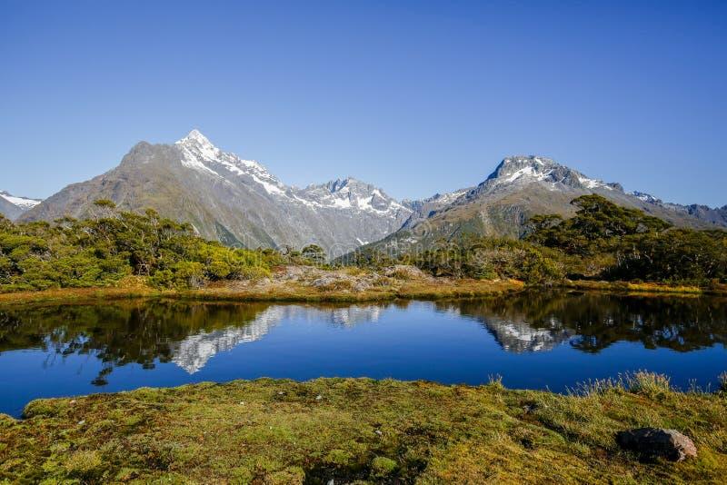 Den nyckel- toppmöteslingan i den Fiordland nationalparken royaltyfri fotografi