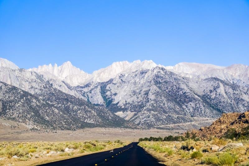 Den nyligen byggda om vägen som leder in mot Whitney Portal, oavbrutet tjata korsa vägen, den östliga toppiga bergskedjan berg, K royaltyfri foto