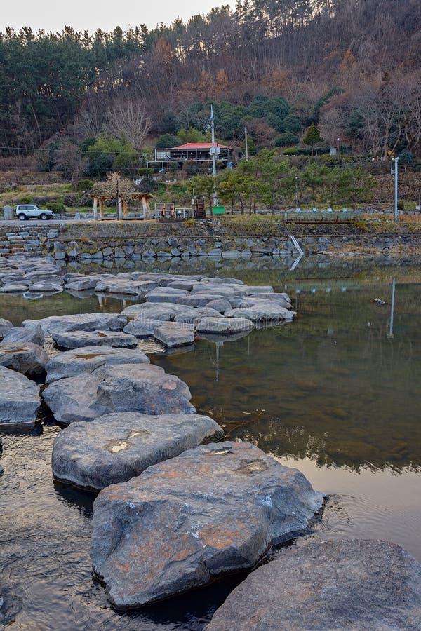 Den offentliga vintern parkerar på Sydkorea arkivfoto