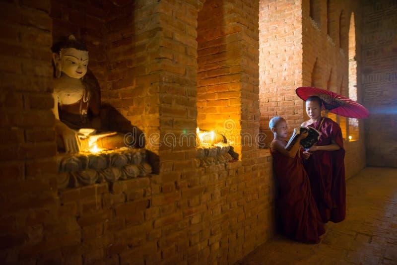 Den oidentifierade buddismneofyt ber i den Buddihist templet royaltyfri foto
