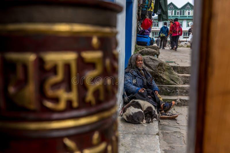 Den oidentifierade mannen sitter med hunden på vägen till everest grundudde in fotografering för bildbyråer