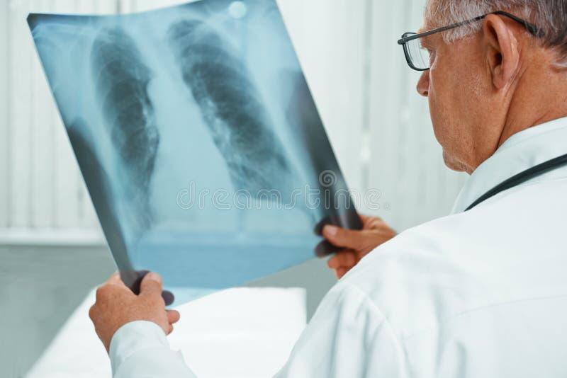 Den oigenkännliga äldre doktorn analyserar röntgenstrålebild royaltyfri bild