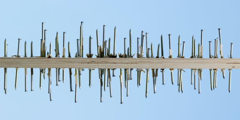 Den ojämna raden av spikar drivande till och med kryssfanerbräde arkivbild