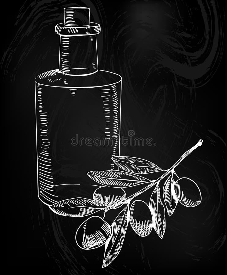 Den olivgröna filialen och olja skissar Räcka den utdragna olivgröna filialen och olja i flaskan Översiktsteckning Vektorillustra stock illustrationer