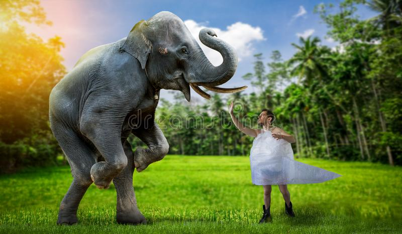 Den onormala mannen som slås in i film, spelar med elefanten arkivbild