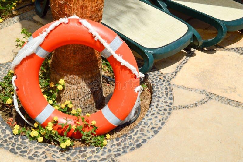 Den orange livbojet för säkerhet av simning vilar på ett stengolv mot en bakgrund av gula blommor och soldagdrivare royaltyfria foton