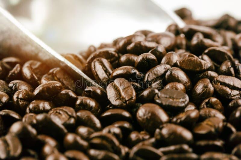 Den oskarpa ljusa designbakgrunden av grillade kaffebönor arkivbild