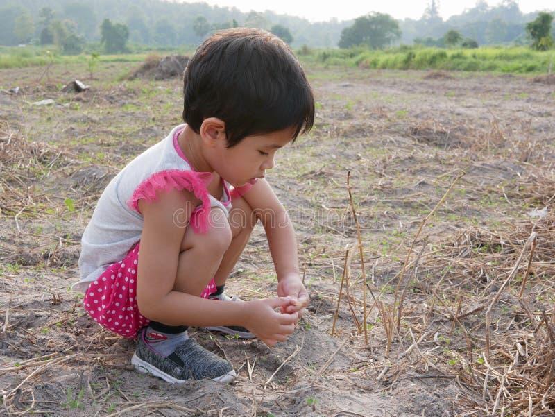 Den oskyldiga lilla asiatet behandla som ett barn flickan som försöker att plantera torra gräs på jordningen för att hålla dem vi royaltyfri foto