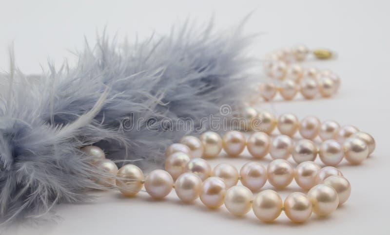 Den pärlemorfärg halsbandet med grå färger befjädrar på vit bakgrund royaltyfria bilder