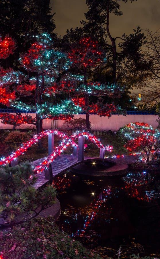 Den panorama- bilden av julljus lite varstans bron, träd, tecken, postar hus och ljus på natten arkivbilder