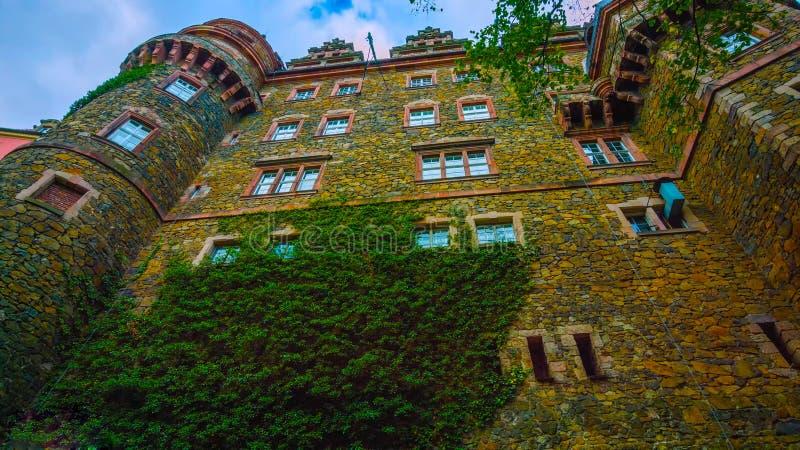Den panorama- flyg- sikten av den ber?mda och majest?tiska Polen 2019 slotten omgav vid erotisk vegetation - Bilder royaltyfri foto