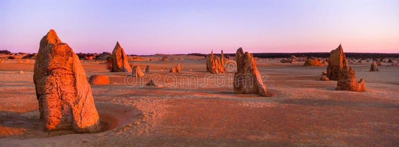 Den panorama- XPan solnedgången över höjdpunkterna red ut kalkstenpelare nära Cervantes, västra Australien royaltyfria bilder