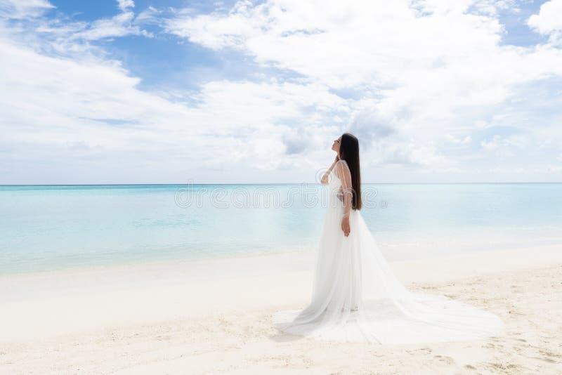 Den perfekta bruden En ung brud i en vit klänning står på en snövit strand royaltyfri fotografi
