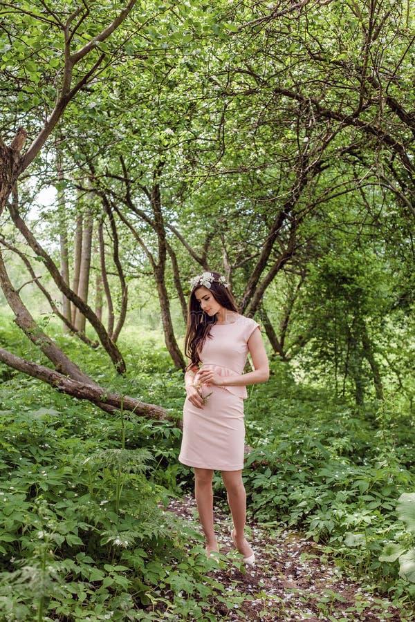 Den perfekta modellen för den unga kvinnan i rosa säsongklänning och kransen för vita blommor i vår parkerar utomhus utomhus- stå royaltyfri fotografi