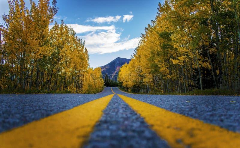 Den perfekta vägen för det bergColorado loppet väver till och med nedgångfärg i Oktober berg royaltyfria foton