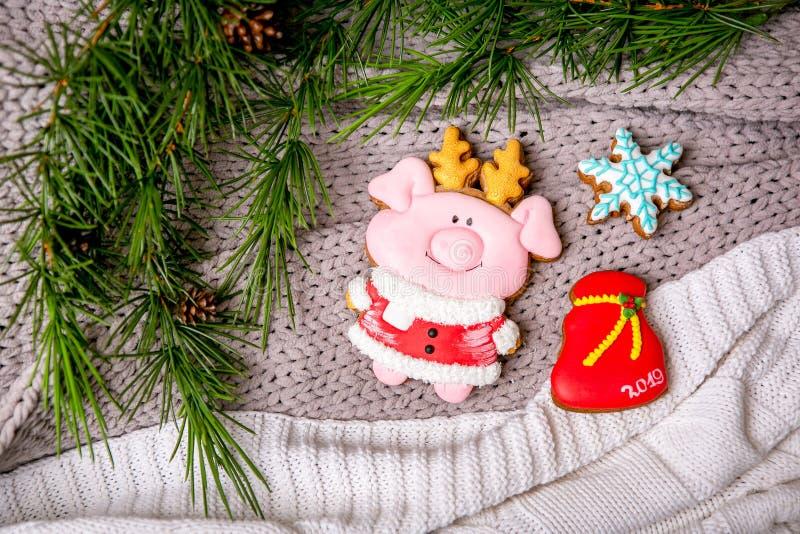 Den piggy pepparkakan och snöflingan på bakgrunden med granfilialer som är plana lägger, den bästa sikten Feriesötsaker ` S för n royaltyfri fotografi