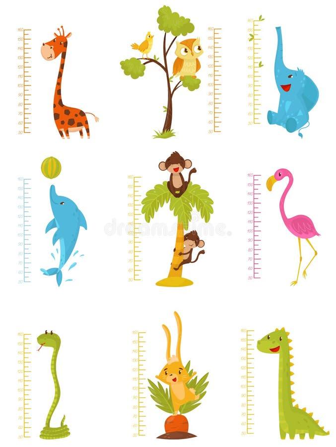 Den plana vektoruppsättningen av linjaler för att mäta lurar tillväxt med gulliga djur och fåglar Dekorativa meterväggklistermärk vektor illustrationer