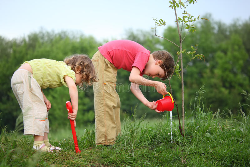 den planterade pojkeflickan häller treen arkivbild