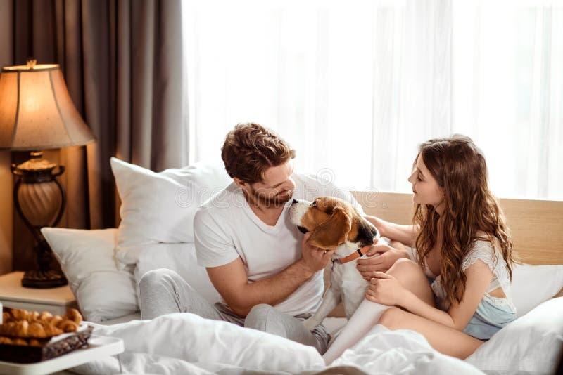 Den positiva kvinnlign och mannen har gyckel samman med deras hund i säng, tycker om lugna inhemsk atmosfär och samhörighetskänsl arkivfoto