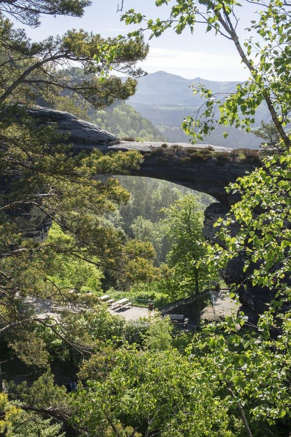 Den Pravcicka branaen är ett smalt vaggar bildande som lokaliseras i bohemmet Schweiz, sent vårlandskap med grönska, blå himmel o arkivfoton