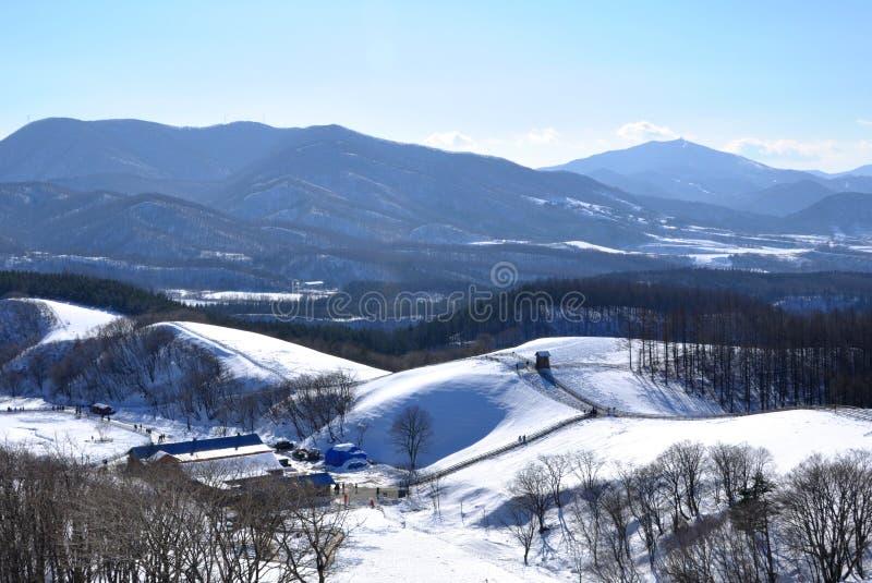 Snöig berg i Sydkorea royaltyfria bilder