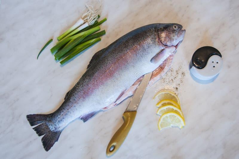 Den rå forellen med kniven, salladslöken, skivor av citronen, peppar och saltar på marmorerar bakgrund Maträtt för ny fisk royaltyfri fotografi