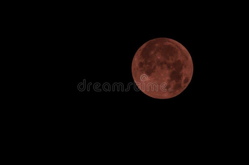 Den röda fullmånen i röd färg kallade också bloodmoon royaltyfri foto