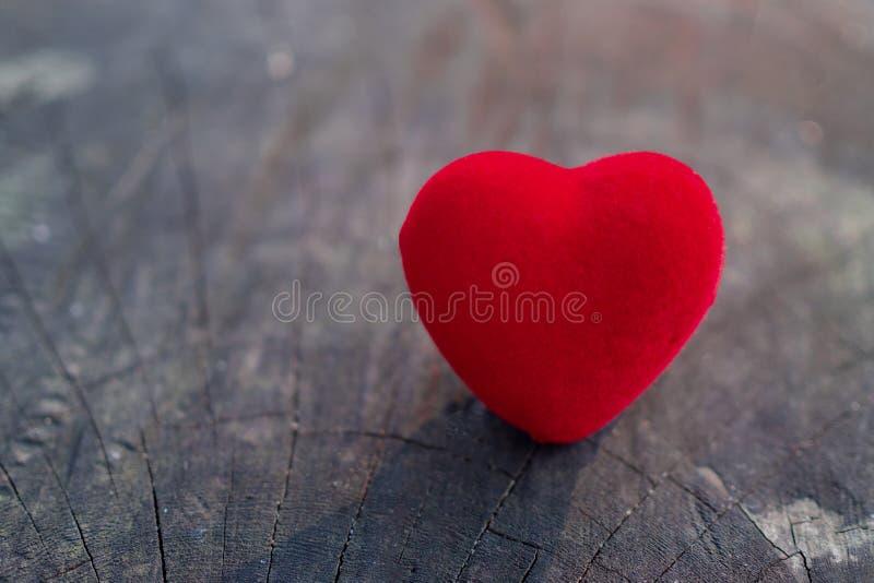 Den röda hjärtan förläggas på trägolvet och har kopieringsutrymme för design i ditt arbete Den röda hjärtan föreställer dagen av  arkivbild
