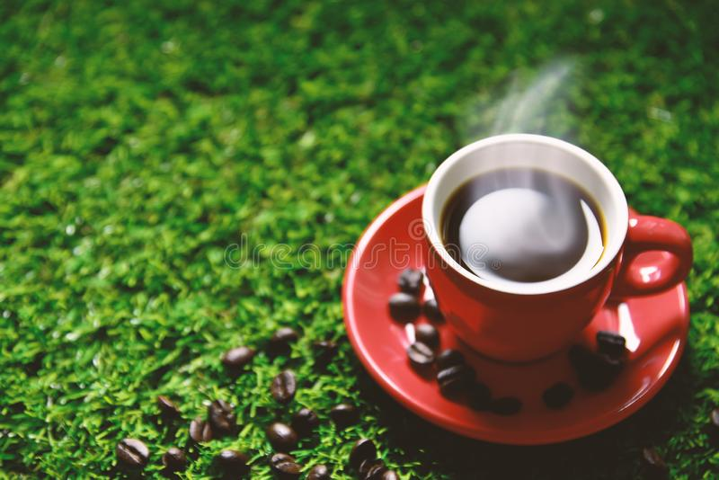 Den röda kaffekoppen på det gröna gräset med kopieringsutrymme för text eller annonsering som dricker begrepp, förälskelsebegrepp royaltyfria bilder