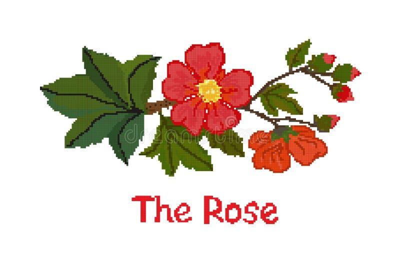Den röda korsstygnblomman steg på en vit bakgrund, intrigen vektor royaltyfri illustrationer