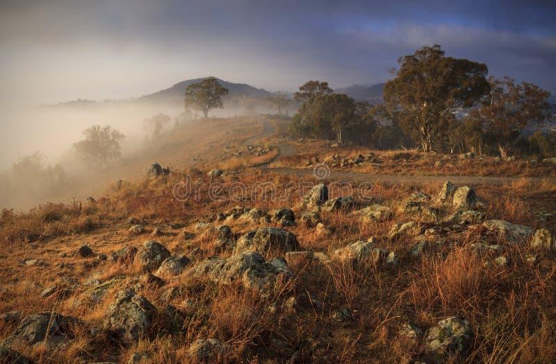 Den röda kullen går Canberra arkivfoton
