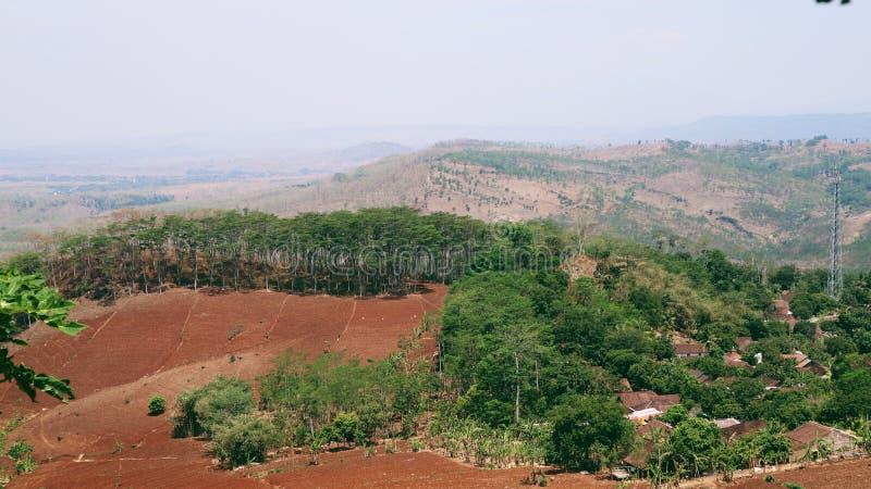 Den röda landomvänden vid gröna träd och blicken gillar beståndsdel två royaltyfri bild