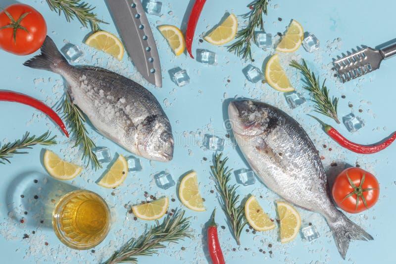 Den r? doradafisken med kryddor, saltar, citronen och ?rter, rosmarin p? enbl?tt bakgrund Top besk?dar arkivbild
