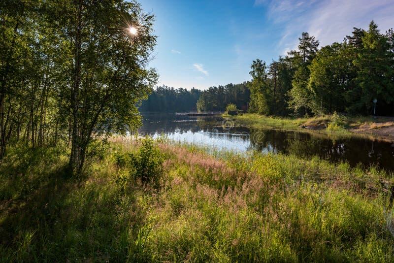 Den rasa vegetationen av ön är oskiljaktig från sjön royaltyfri bild