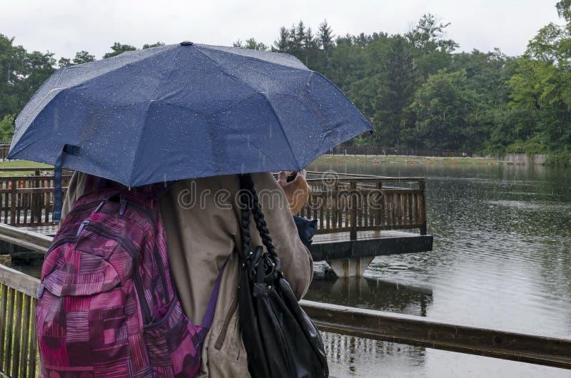 Den regniga dagen går med paraplyer i Rila parkerar nära staden Dupnitsa arkivbilder