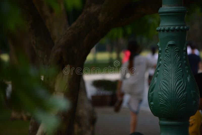 Den rinnande trädgården royaltyfria foton