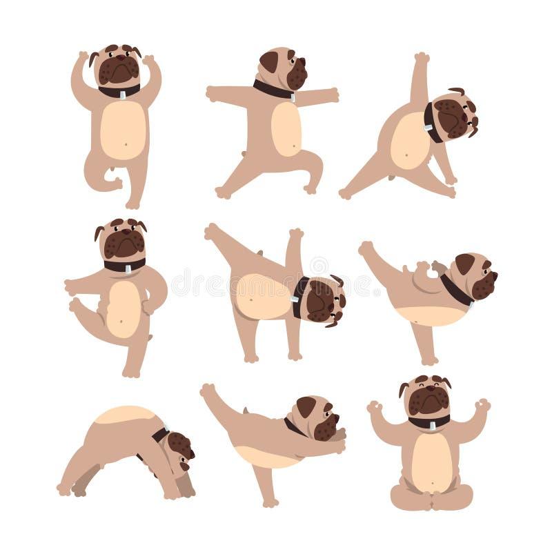Den roliga bulldoggen i olikt poserar av yoga Sund livsstil Hund som gör fysiska övningar Tecknad filmtamdjur royaltyfri illustrationer