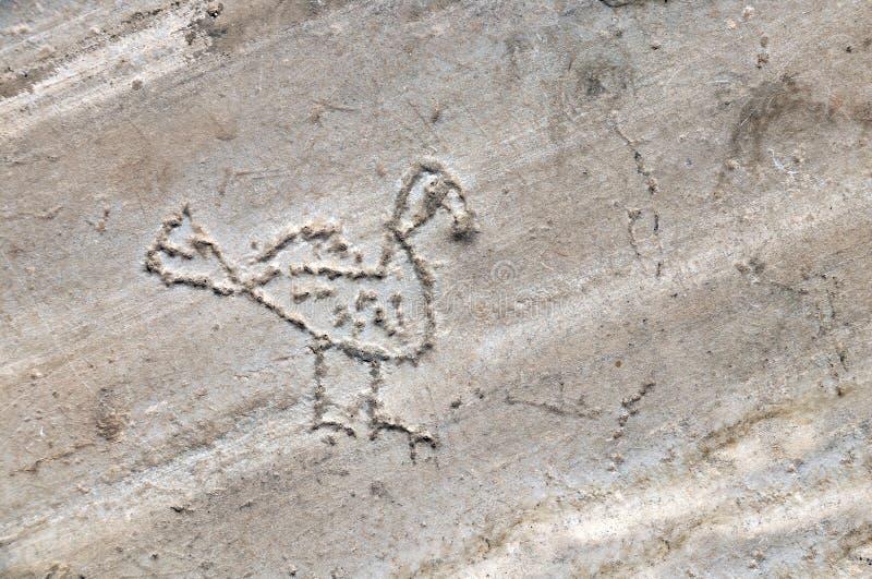 Den roliga primitiva fågelbilden fördärvar in av Saint John basilika, Selcuk, Turkiet royaltyfri bild