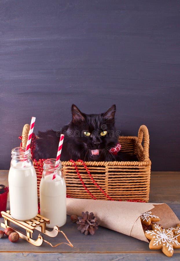 Den roliga svarta katten i korgen, jul två flaskor med mjölkar och kakasnöflingor på trätabellen Svart tavlabakgrund arkivfoto