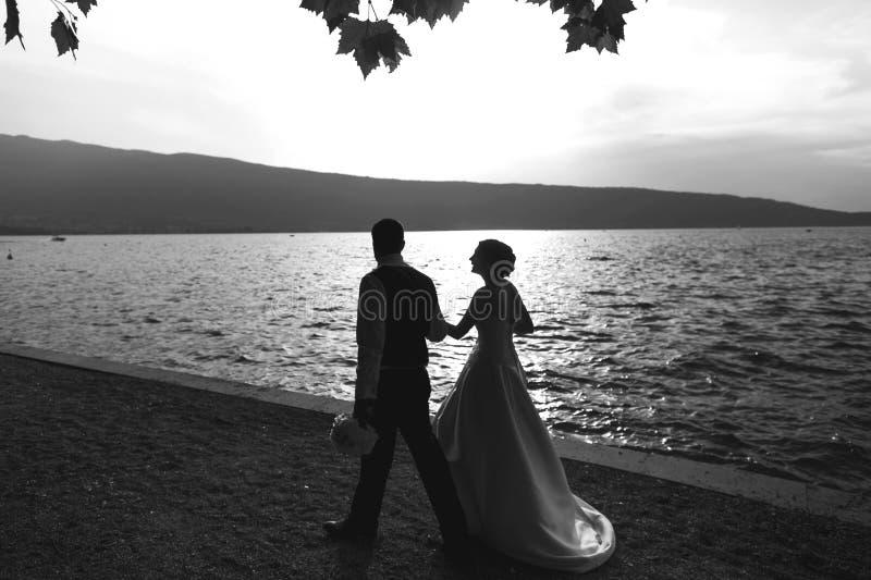 Den romantiska den nygift personparbruden och brudgummen på solnedgången sätter på land nära se arkivfoto