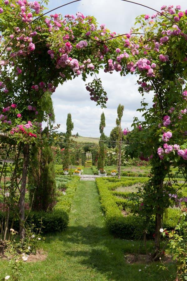 Den romantiska gränd-vägen i pergolan från rosor fotografering för bildbyråer