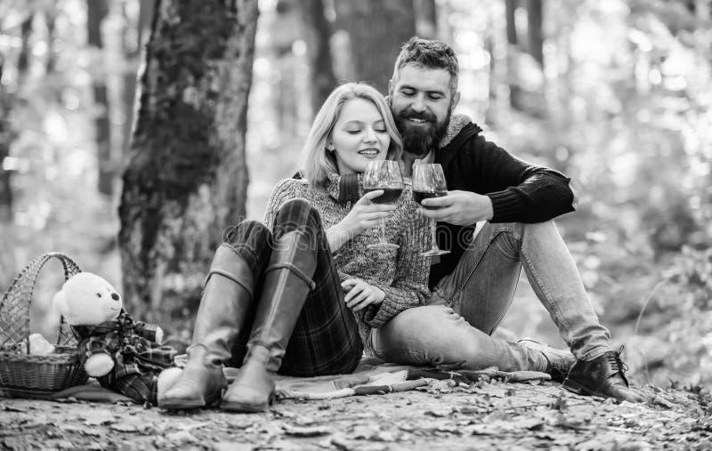 Den romantiska picknicken med vin i skog kopplar ihop f?r?lskat firar ?rsdagpicknickdatumet Koppla ihop att kela dricka vin royaltyfria bilder