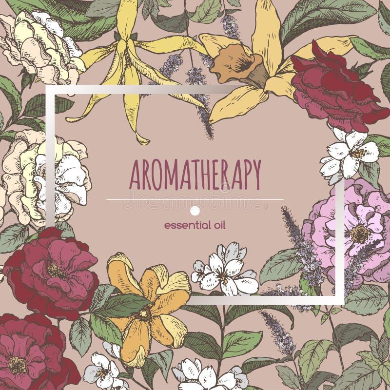 Den romantiska rammallen med aromatiska växter skissar stock illustrationer