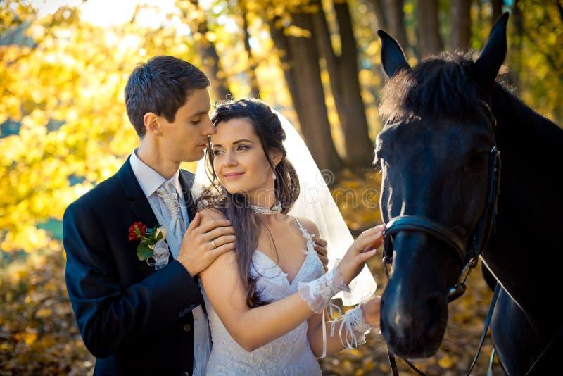 Den romantiska sinnliga ståenden av den stilfulla brudgummen som kramar ömt hans charmiga ursnygga brud under deras, går med häst royaltyfri foto