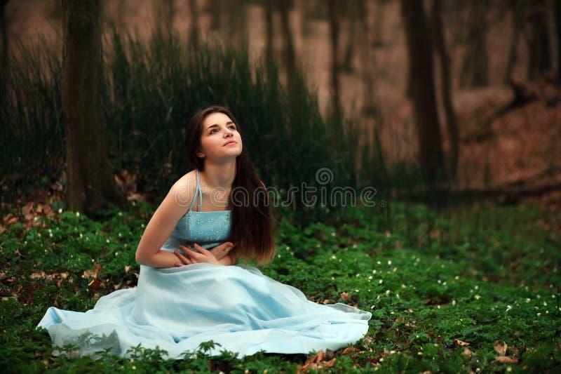 Den romantiska unga flickan i en lång blått klär, i skymningskog royaltyfri bild