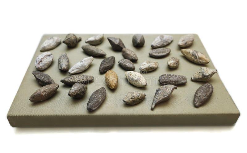 Den romerska mandeln formade rem-kulor med namnet av äga Co arkivfoton